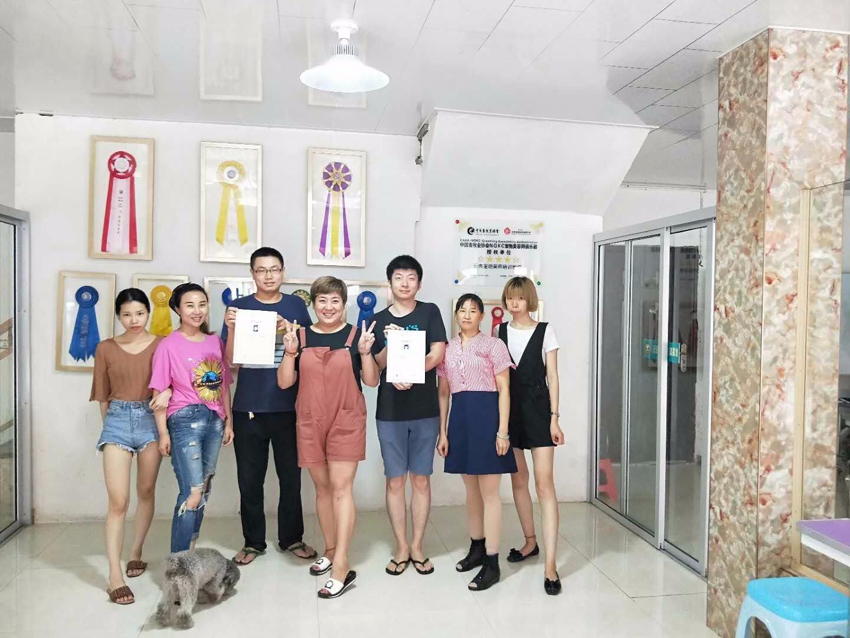 广州宠物美容,宠物美容培训,宠物美容师证,广州思迪宠物美容...